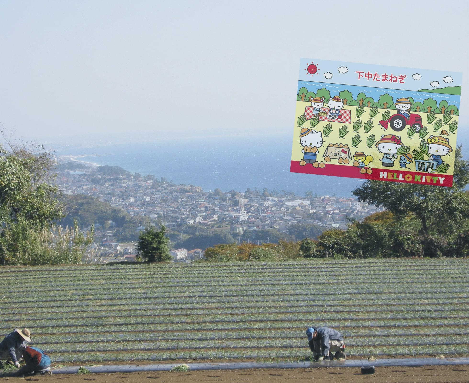 「伴走者」として。小田原市橘商工会は、常に、小規模事業者様の「伴走者」として、持続的発展のためのサポートを行っています。